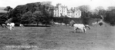 Cows graze in the field in front of Ardencaple Castle, the ancient seat of the Clan MacAulay. All but one tower of the building was demolished in 1957, and a naval housing estate was built on the site. Image c.1911.