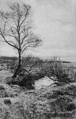 Mirror on the moor